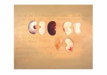 Escritura - Acrylic and charcoal on canvas, 123 x 150 cm, Mónica Luza 2006