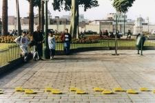 P46-The-Increasing-Yellow-Lines-Monica-Luza